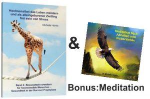 ebok-4stress-mit-bonusmeditation-abheben