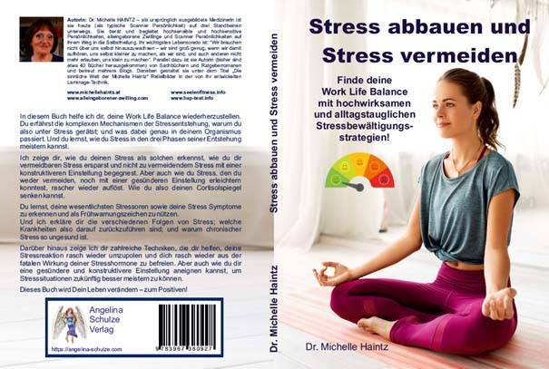 stress 1+2 neues cover
