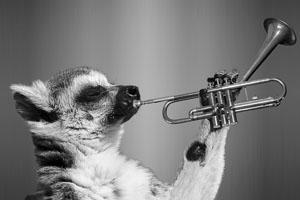 trompete blasen gegen schlafapnoe